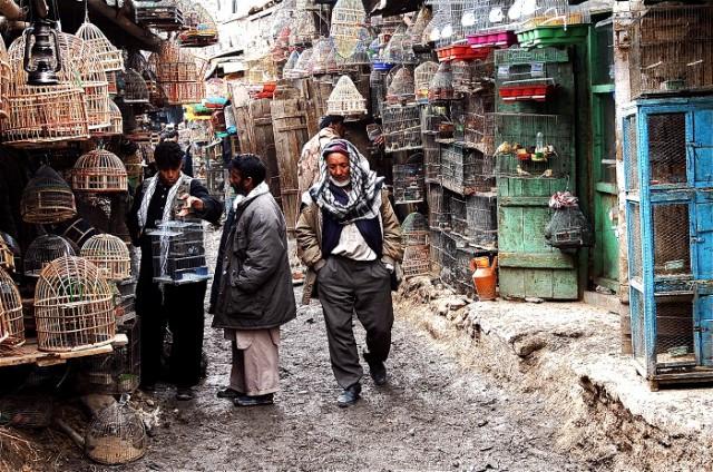 nietypowe bazary