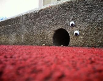 10 przykładów eyebombingu – dziwnego trendu w sztuce ulicy
