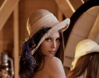 Rozkładówka Playboya, która zrobiła zaskakującą karierę w świecie nauk ścisłych
