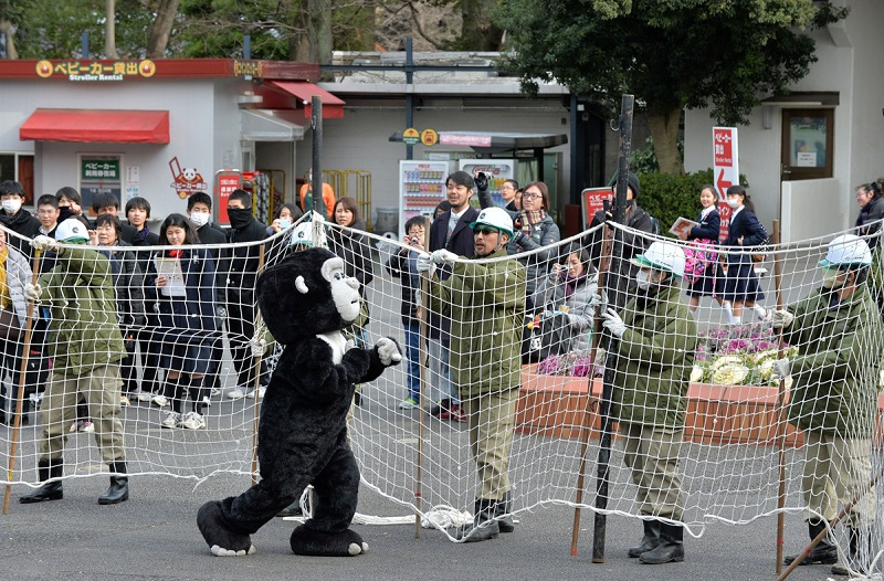 cwiczenia-zoo-3