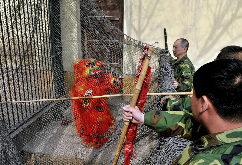 cwiczenia-zoo-7