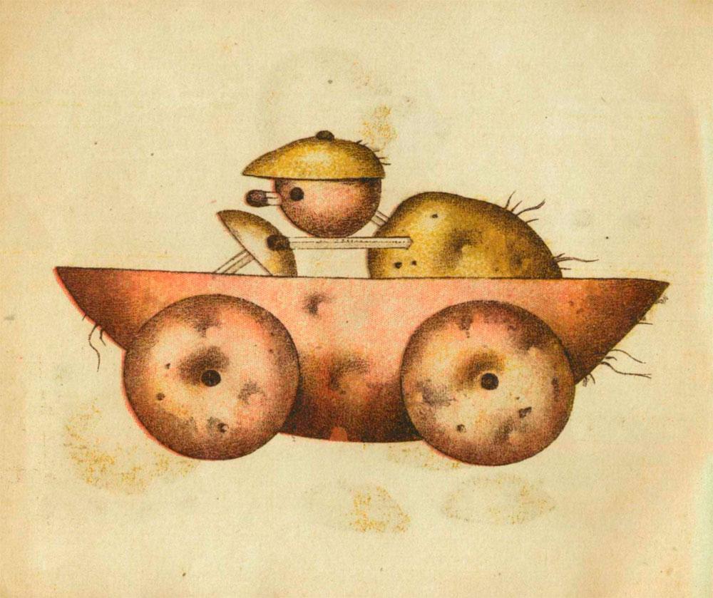 ziemniaki-40