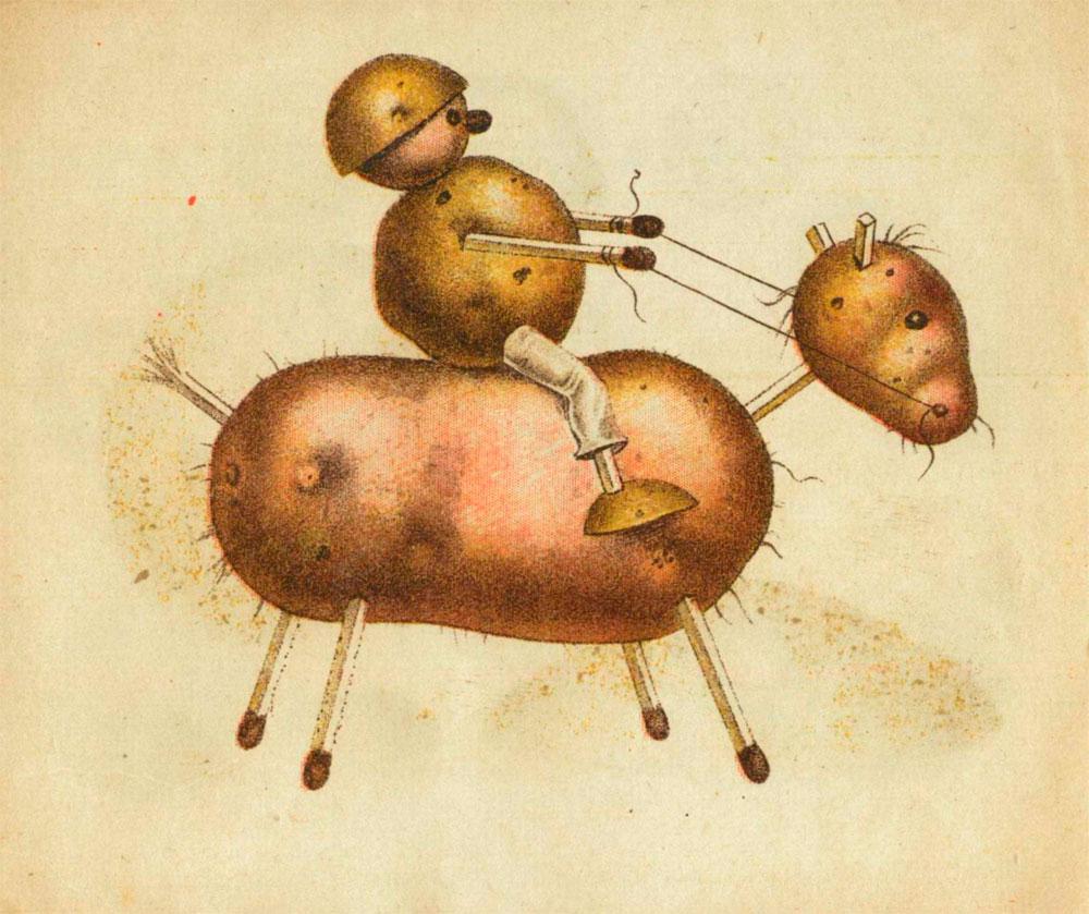ziemniaki-80