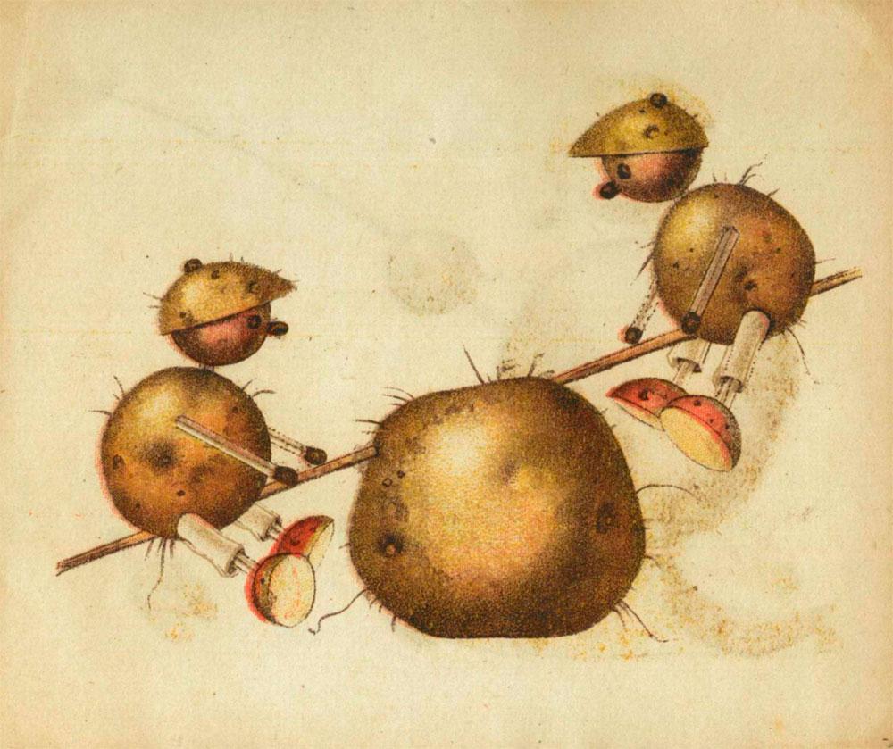 ziemniaki-90